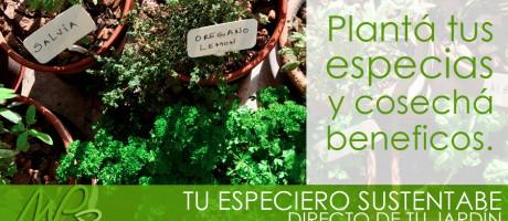 Directo de tu jardín, un especiero sustentable